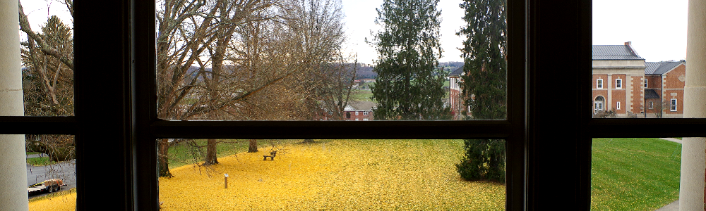 Picture of Murray Alumni Lounge Window View Fall