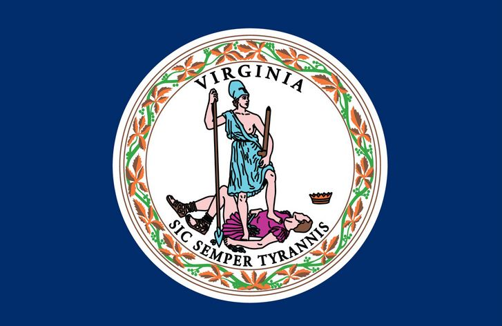 Flag of Virginia (linked to VA government website)