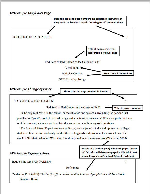 examples of apa style papers