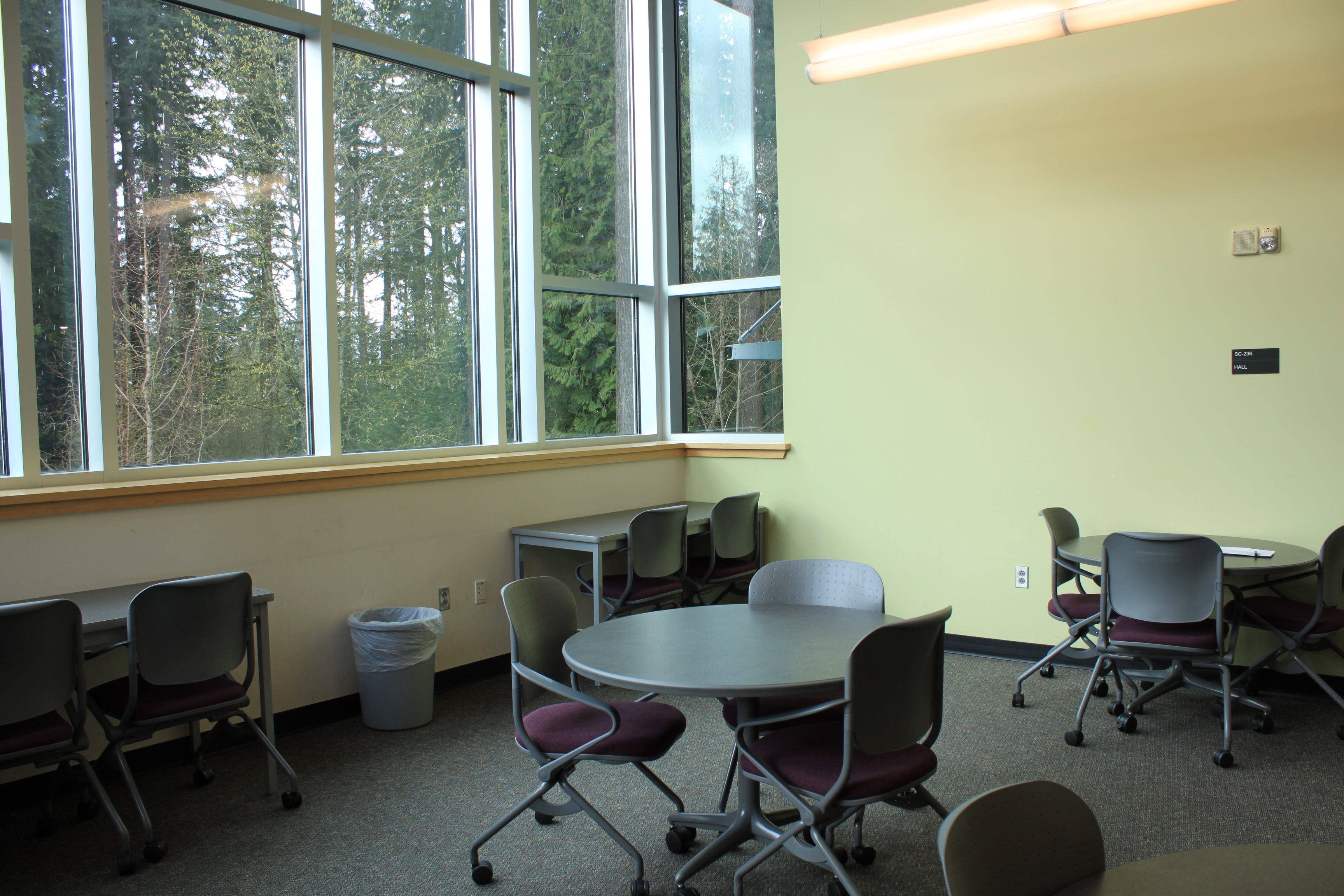 study area with tables, chairs, large windows
