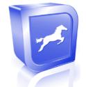 Equine Techniques