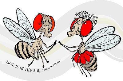 Cartoon courting flies