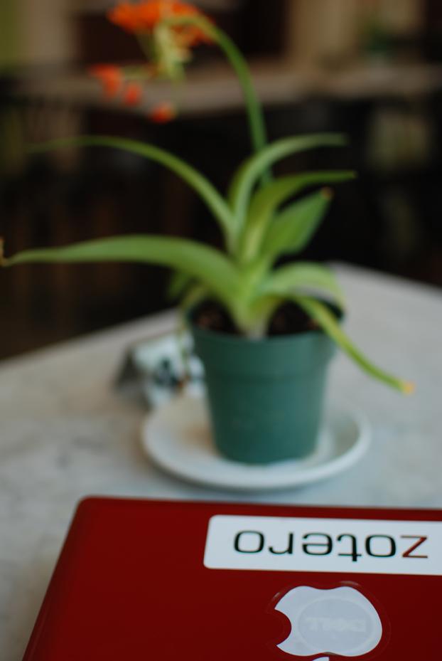 zotero_plante_verte