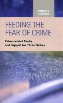 Cover image for the Feeding the Fear of Crime book