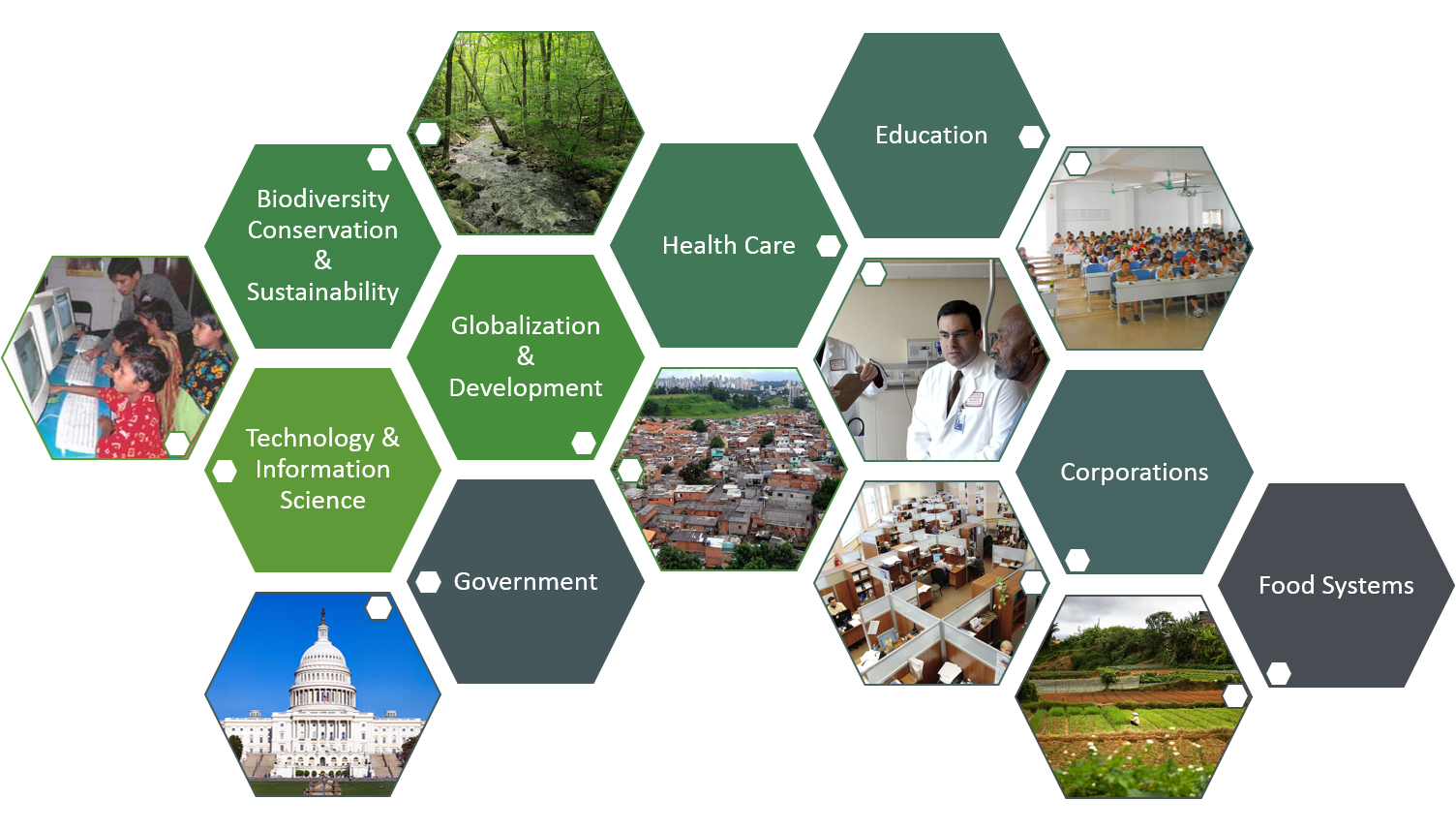 This graphic has images that represent the topics of education, health care, globalization & development, biodiversity conservation & sustainability, corporations, food systems, globalization & development, and technology & Information Science