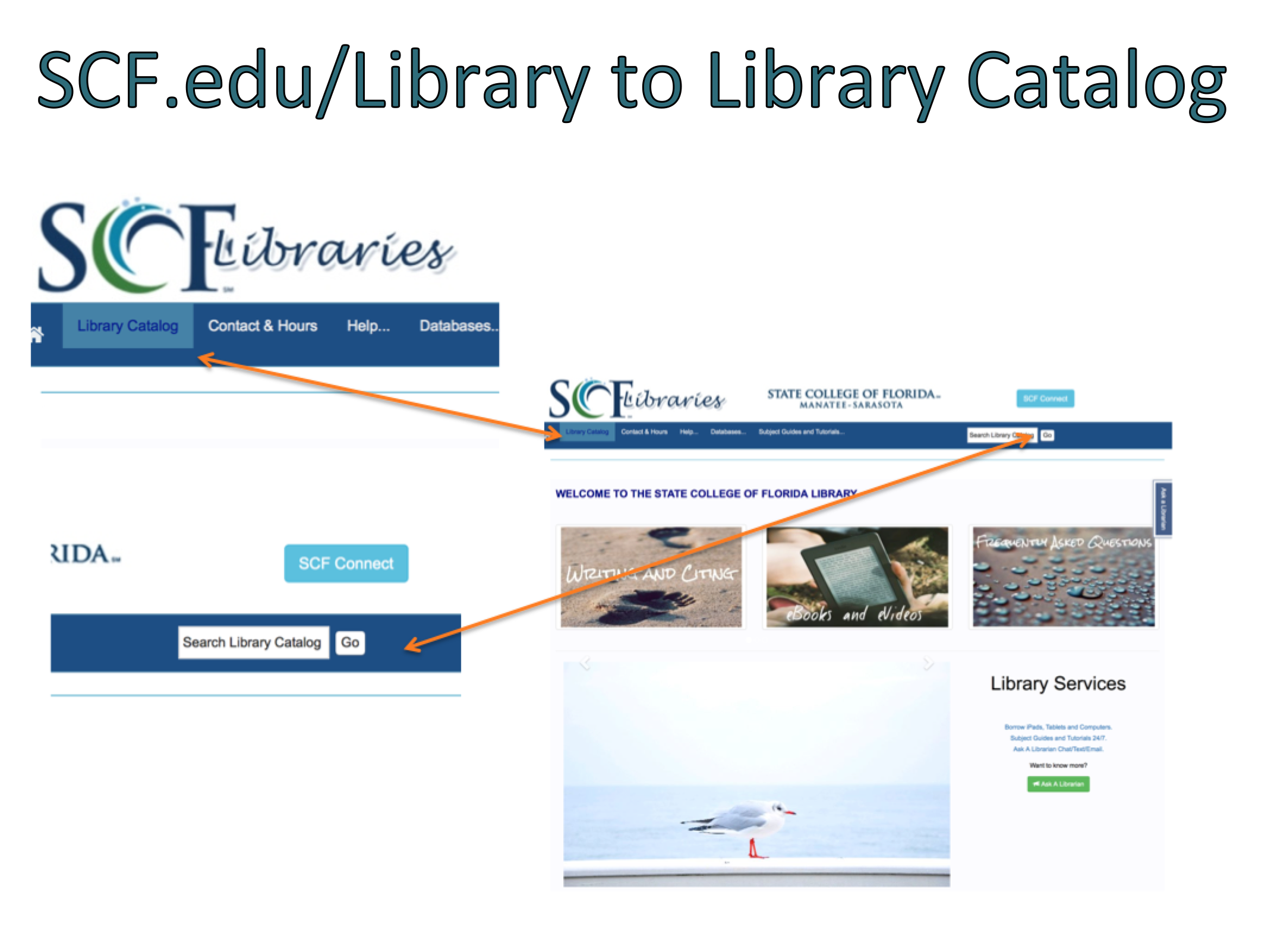 Select Library Catalog from Scf.edu/library