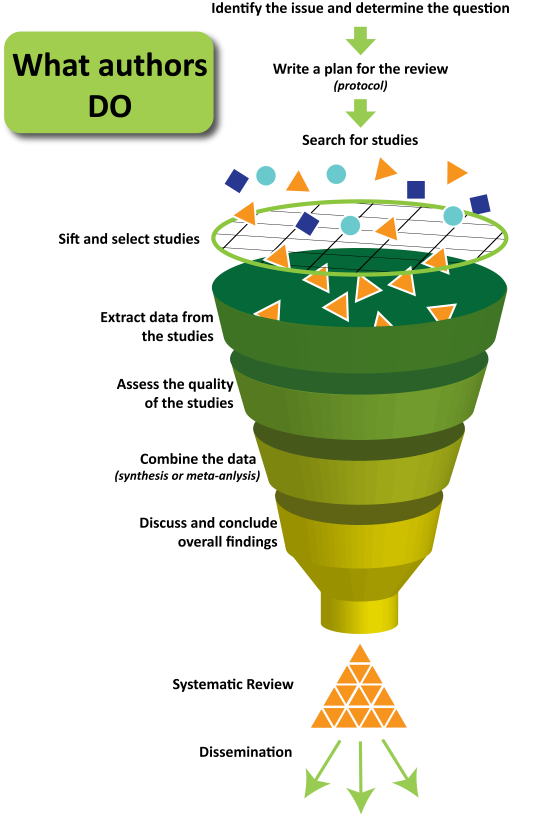 What Authors do in Systematic Reviews