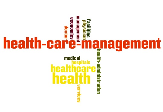 Word cloud of terms related to healthcare management