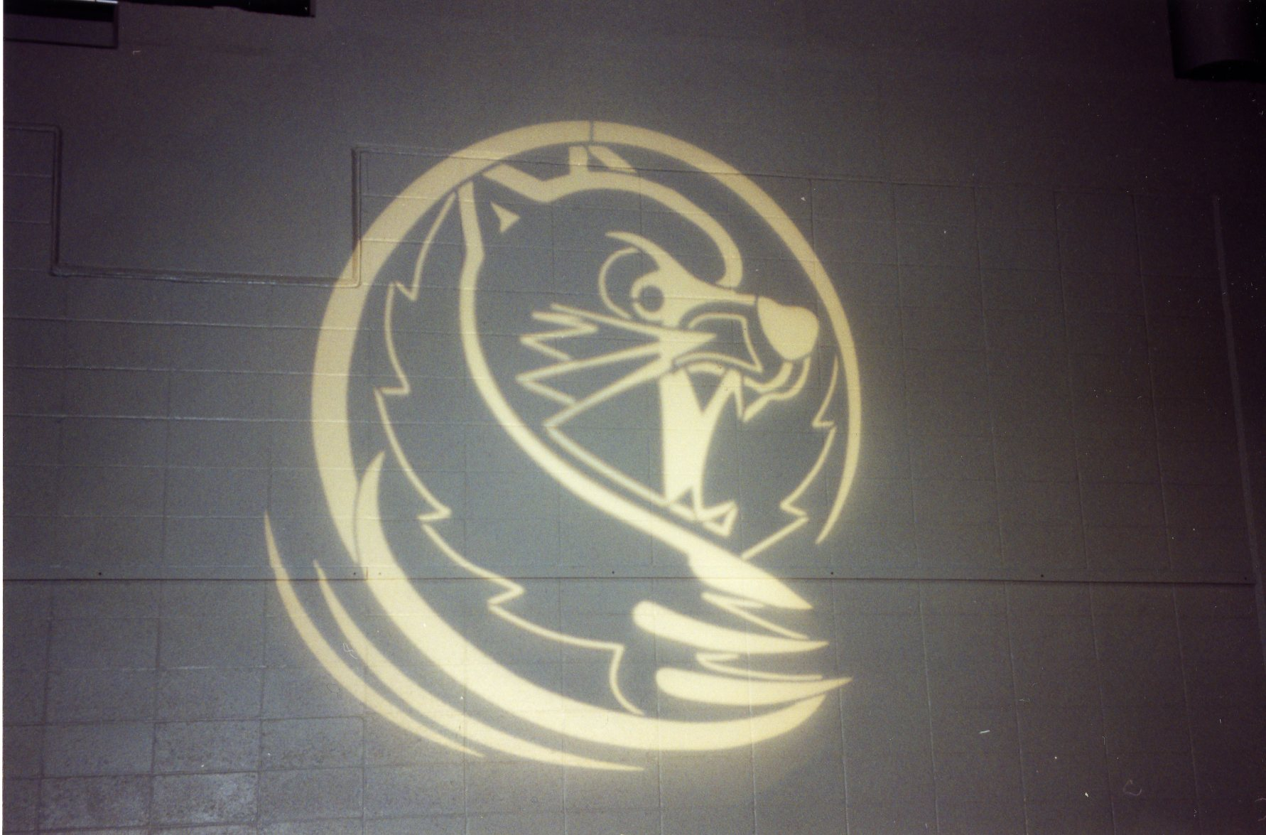 Archive shot of the Lander Bearcat logo on the wall of the arena