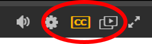 Lynda closed caption button screenshot