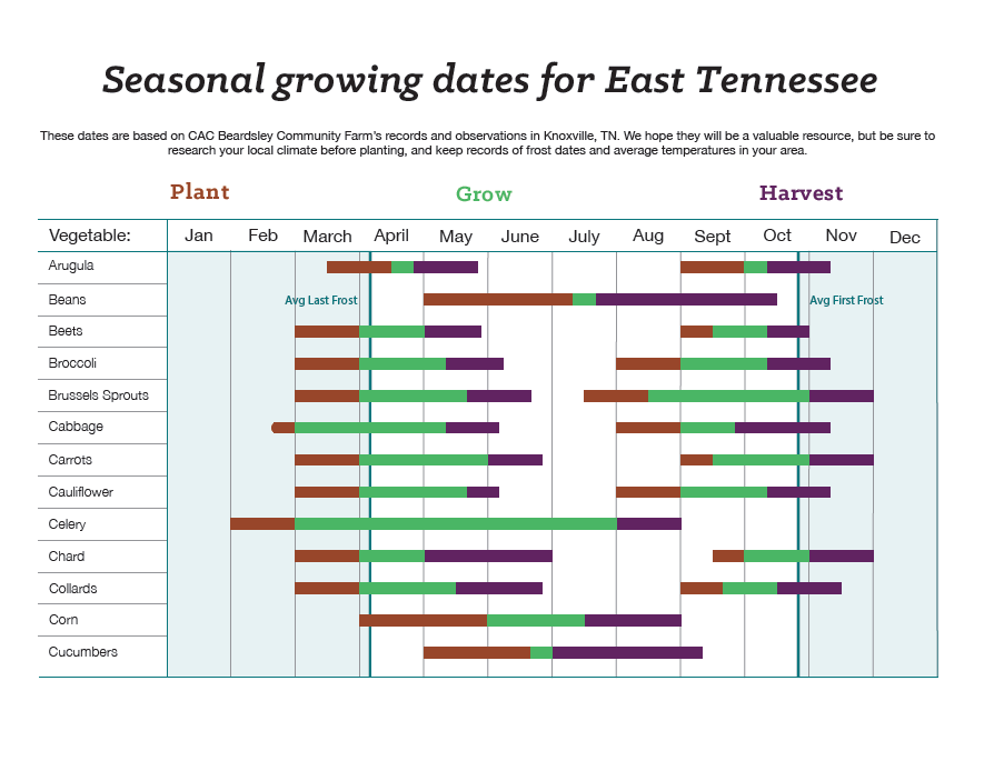 "Seasonal growing guide for East Tennessee. ""These dates are based on CAC Beardsley Community Farm's records and observations in Knoxville, TN. We hope they will be a valuable resource, but be sure to research your local climate before planting, and keep records of frost dates and average temperatures in your area."" Part 1 of 2 visual charts depicting peak times for plalnting various vegetables."