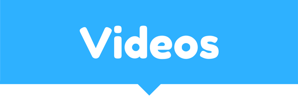 Video Databases