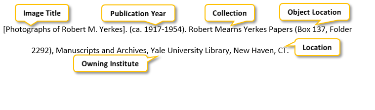 [Photographs of Robert M period Yerkes] period parenthesis ca period 1917-1954 parenthesis period Robert Mearns Yerkes Papers parenthesis Box 137 comma Folder 2292 parenthesis comma Manuscripts and Archives comma Yale University Library comma New Haven comma CT period
