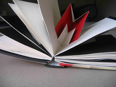 Image of pop-up book