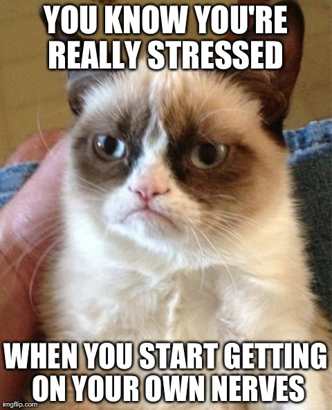 """Grumpy cat """"You know you're really stressed when you get on your own nerves"""