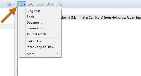 New item type menu.
