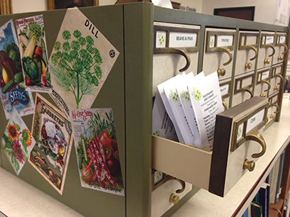 Seed Library cabinet