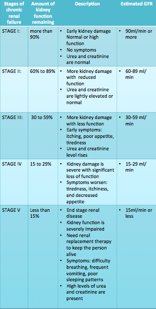 Stages Of Chronic Kidney Disease Exploring The Role And Function Of The Kidneys Libguides At Health Science Information Consortium Of Toronto