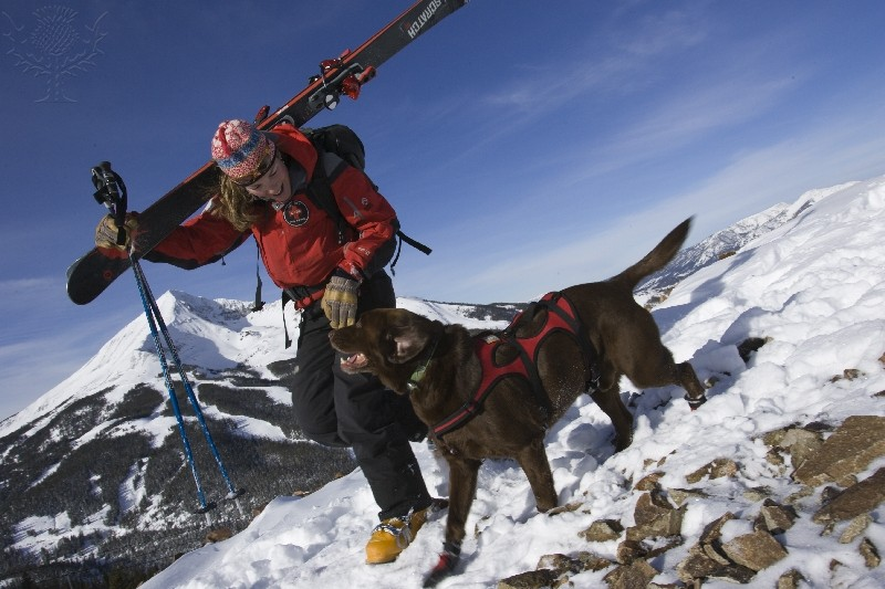 Female snowboarder with a chocolate Labrador on the side of a mountain