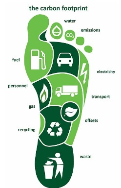 essay on carbon footprint The carbon footprint' needs to be defined to clear the confusions prevailing about the term the definition given by weidmann and minx (2007).