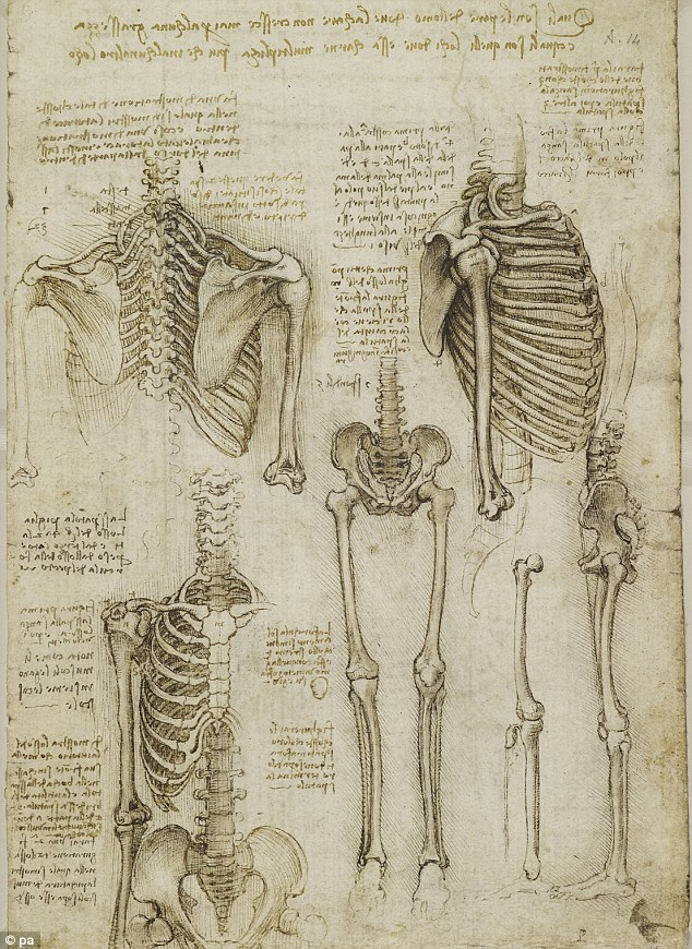Online Databases - Anatomy and Physiology - LibGuides at Napa Valley ...