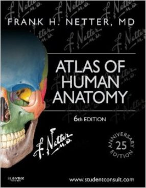 Cover Image for Netter's Atlas of Human Anatomy
