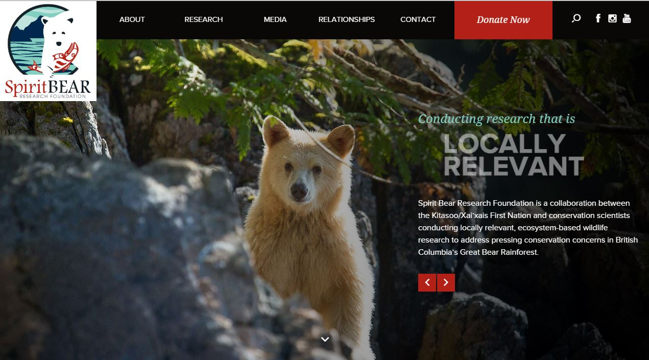 Screenshot of https://spiritbearfoundation.com/
