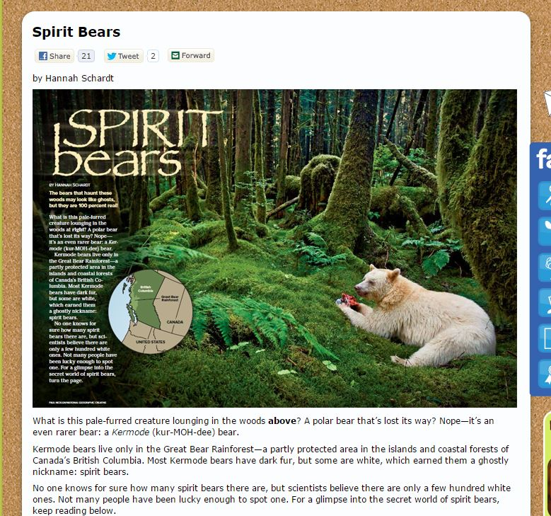 Screenshot of https://www.nwf.org/Kids/Ranger-Rick/Animals/Mammals/Spirit-Bears.aspx