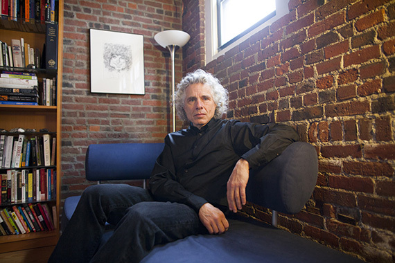 Professor Pinker photo