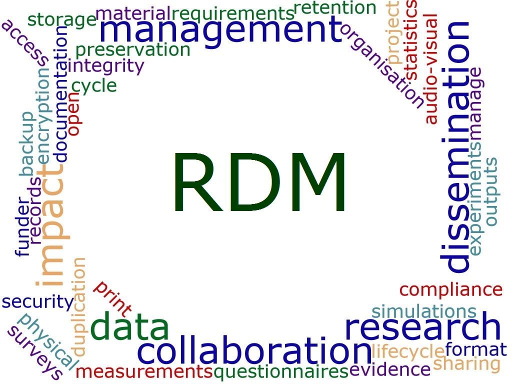 RDM wordcloud