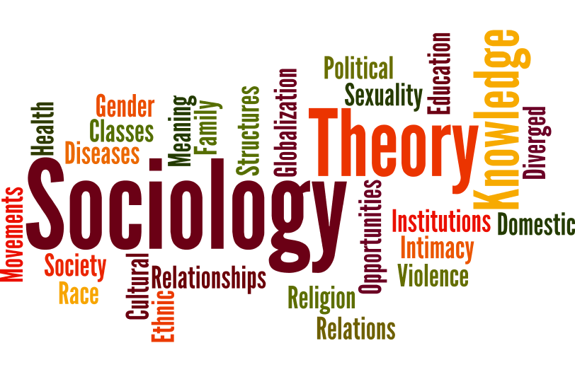 Image result for sociology