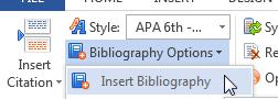 Insert Bibliography Option