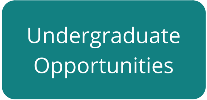 Button linking to Undergraduate Opportunities from UM