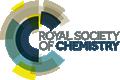 RSC 'de Açık Erişim Makale Yayınlama Şansını Yakala
