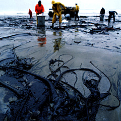 Photo of oil spill clean up