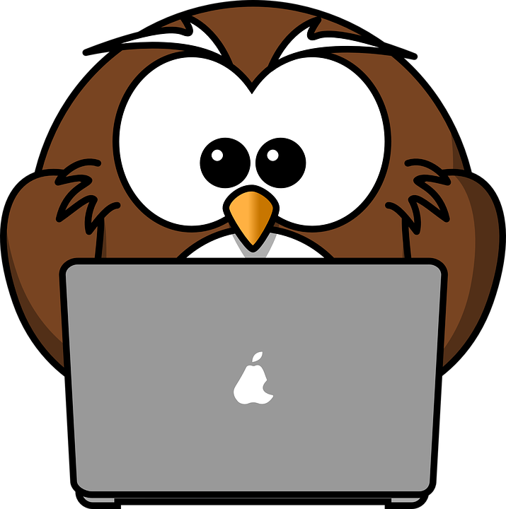cartoon owl with a laptop