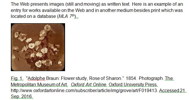 citing images in mla 8th - citation