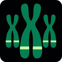 NCBI Gene Database