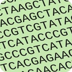 NCBI Nucleotide Database