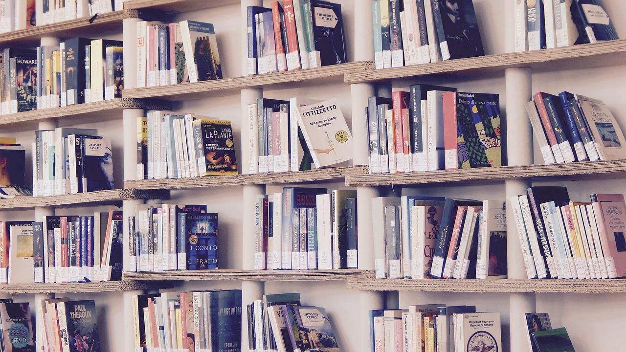 Books on bookshelves CC0 Public Domain via Pixabay
