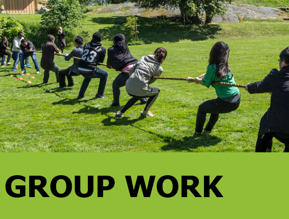 Image link to Group Work Guide