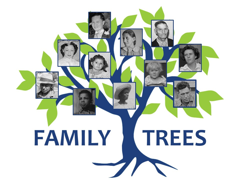 Image illustration of a tree with vintage family photographs