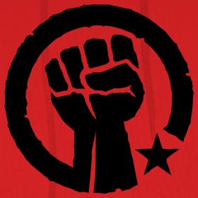 Socialist power fist