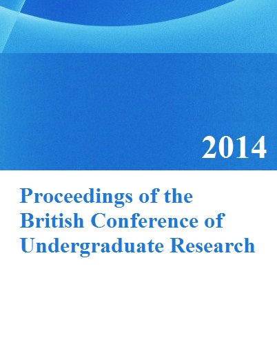 Do undergraduate dissertations get published