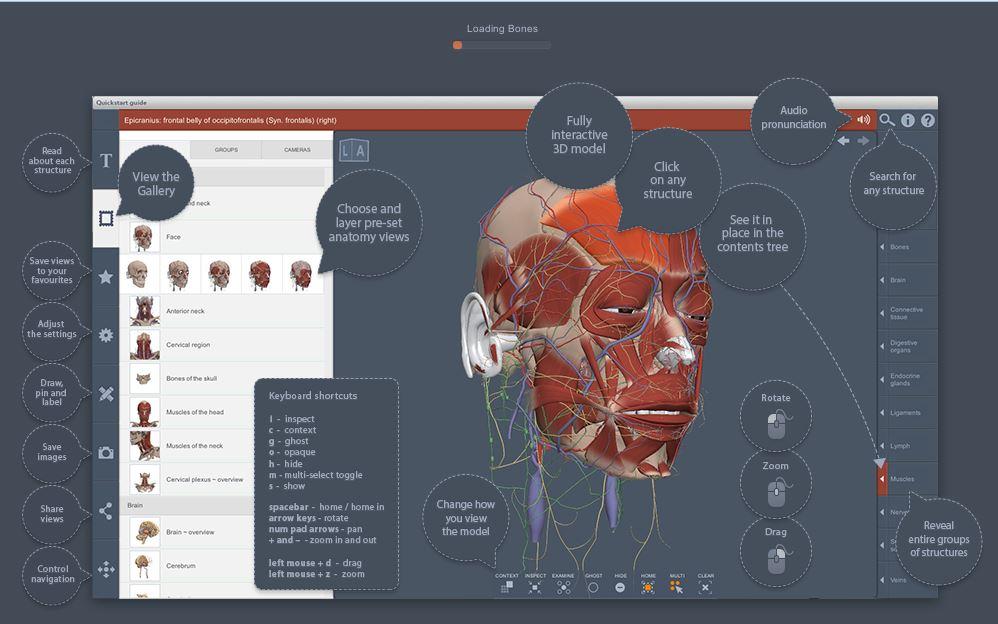 Anatomy TV - Anatomy and Physiology - LibGuides at La Trobe