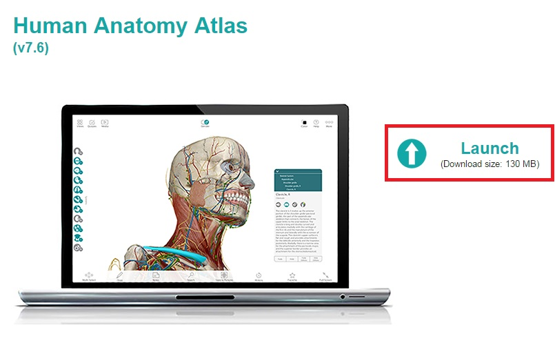 Q Tell Me More About Visible Body Human Anatomy Atlas Answers