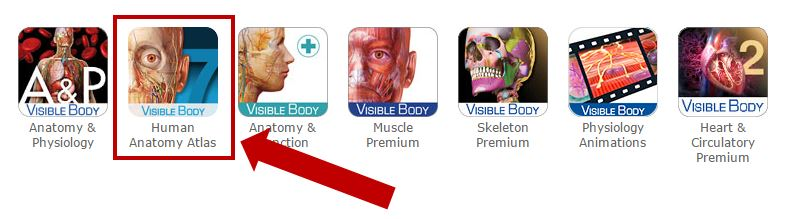 From the Visible Body modules, select Human Anatomy Atlas
