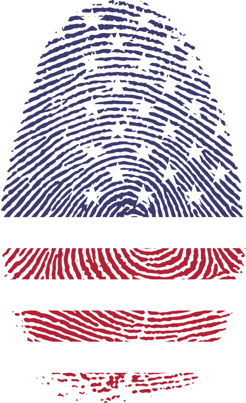 american flag in the shape of a fingerprint
