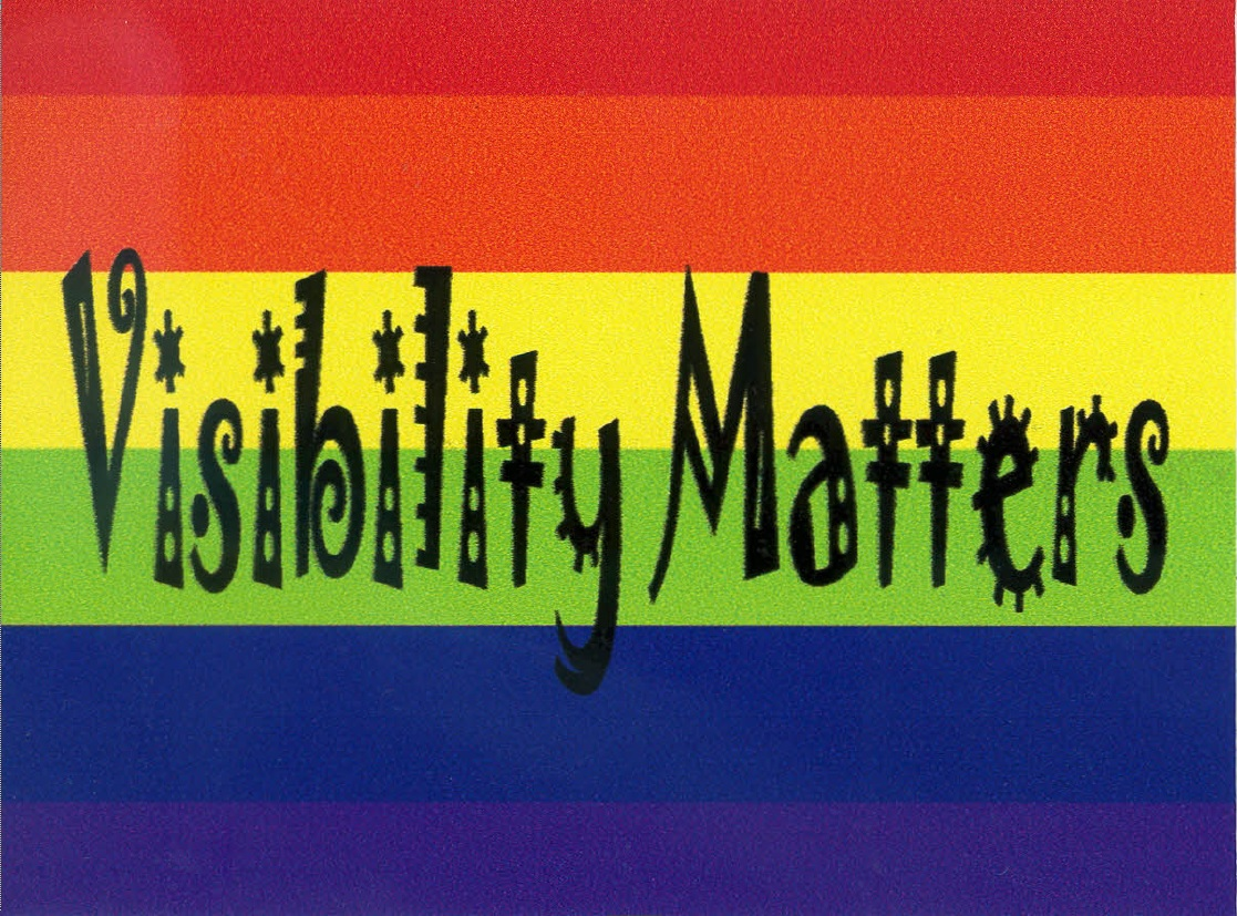 visibility matters text on pride flag