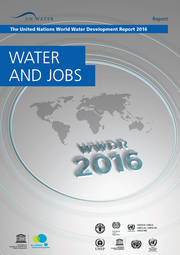 United Nations World Water Development Report